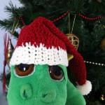 Le bonnet de Noël de Raoul